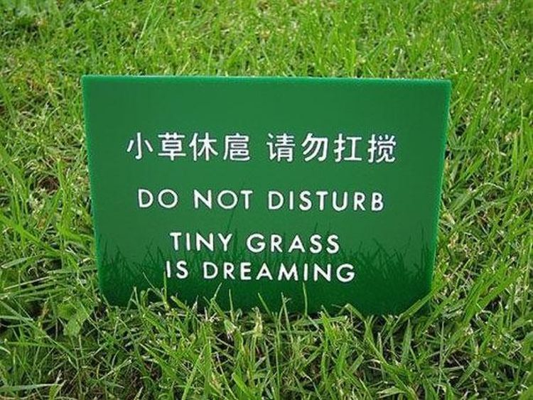 hilarious-chinses-mistranslations (35)